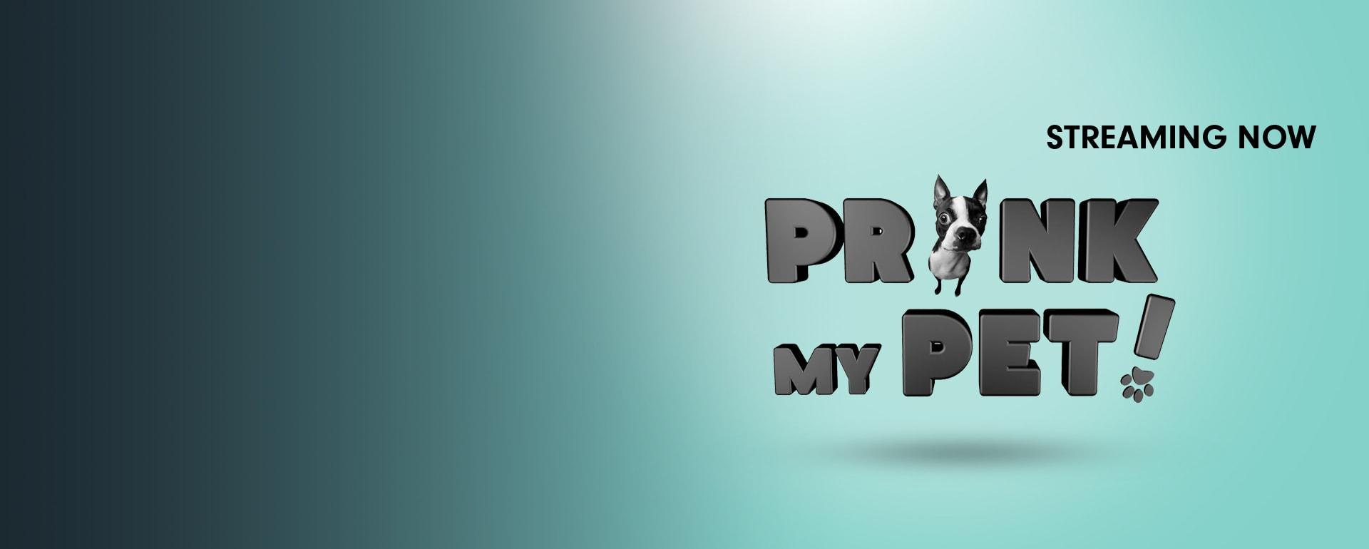Prank my Pets