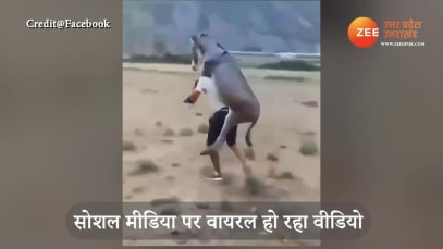 man carrying donkey on his back funny video viral social media smup