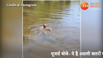 Cute: Man plays with crocodiles