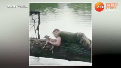 Trending video soldier rescue a bay fawn from drowing video gone viral you love this pcup
