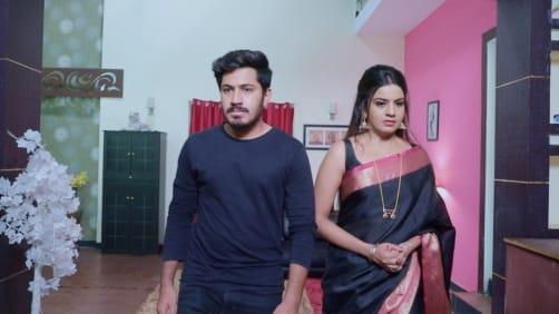 Shivani and Trishul to Get Divorced